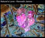 Nature's Love